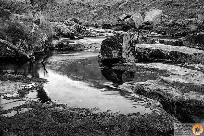 Tavy Cleave Dartmoor National Park