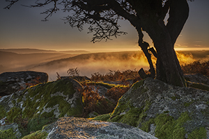 Brian Northmore Photography Workshop Dartmoor