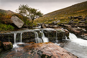 Dartmoor 20 Photography Walks