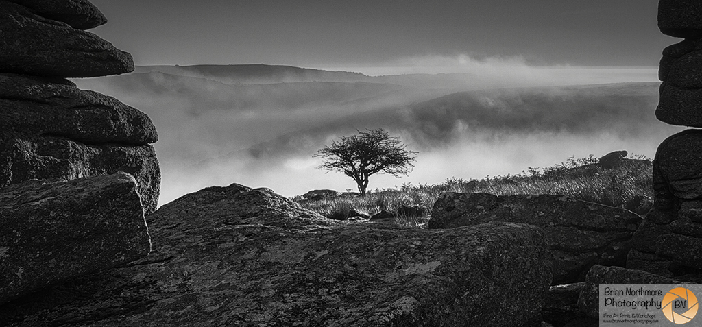 BriAn Northmore Photography - Accessible Workshop. Combestone Tor From The Car Park