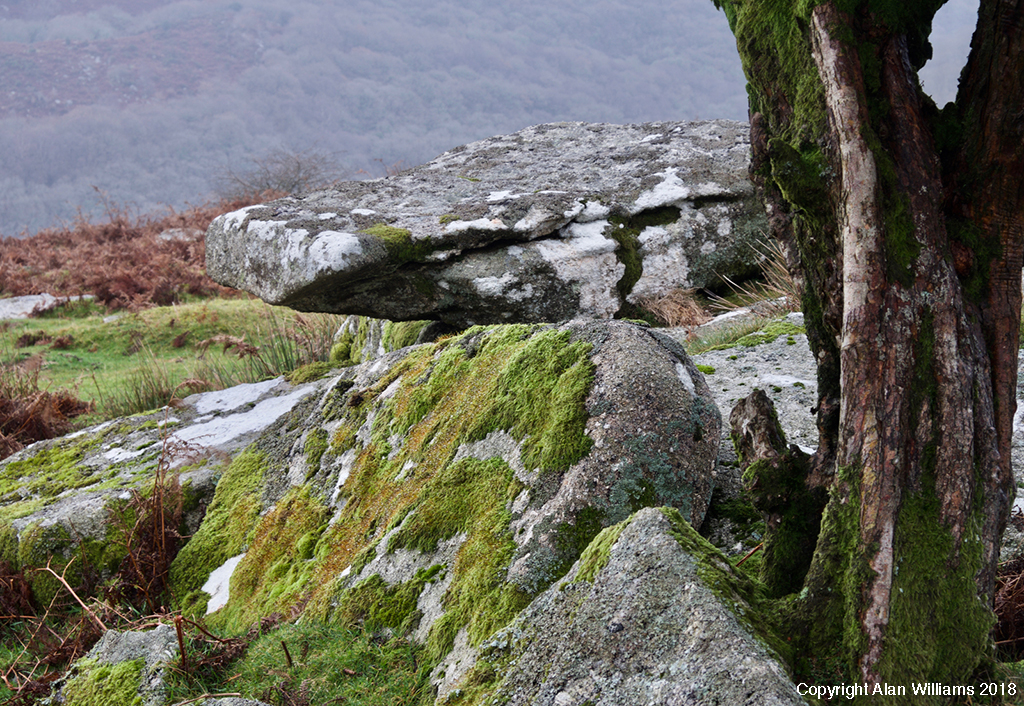Brian Northmore Photography Workshop - Combestone Tor Dartmoor Dartmoor
